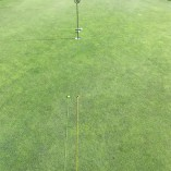 Tee Claw Putting